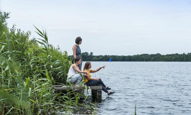 Meren- en kanalenroute: ontdek een stukje paradijs in de Antwerpse Kempen.