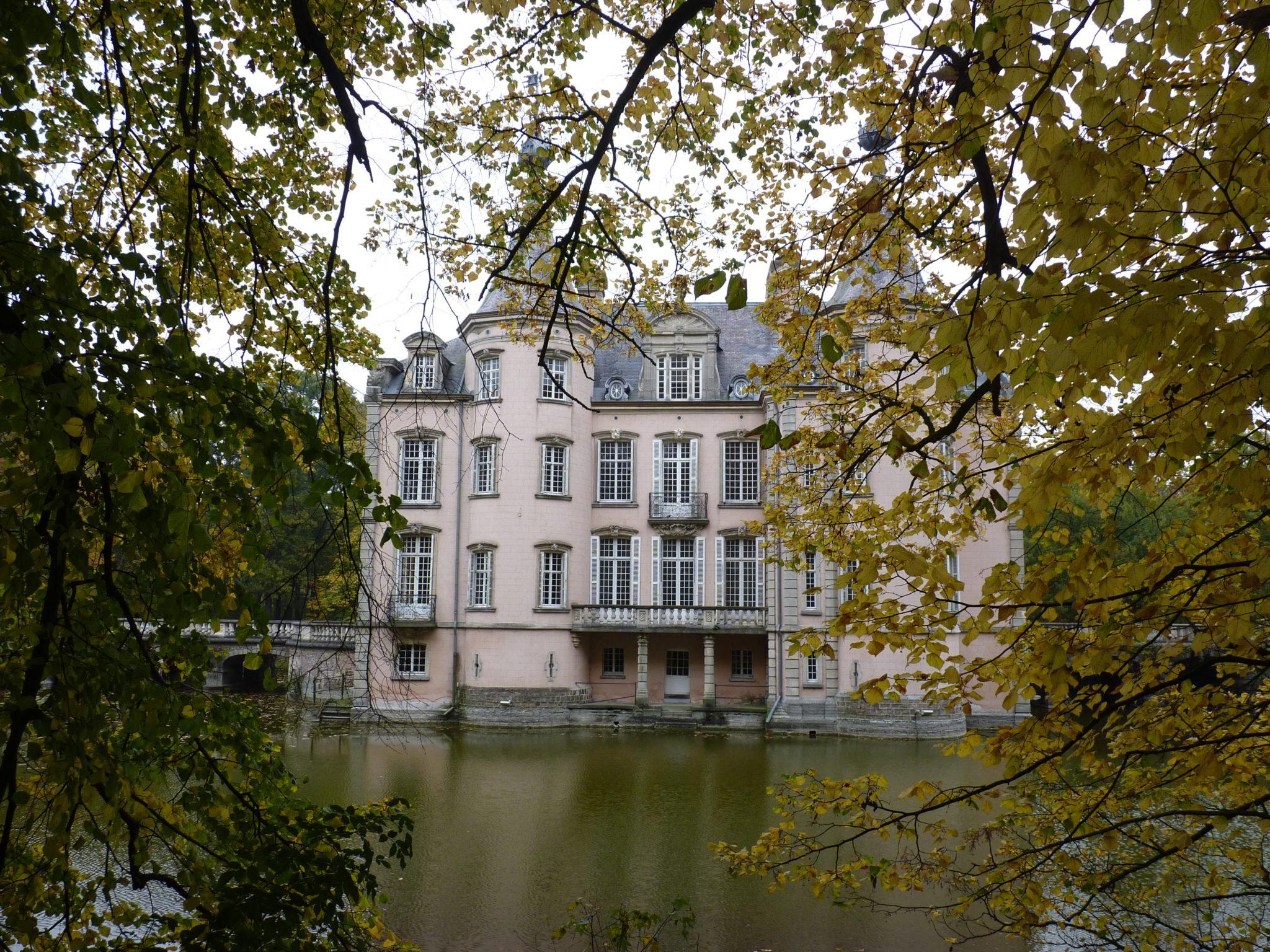 Leve de boslucht in het kasteelpark van Poeke.