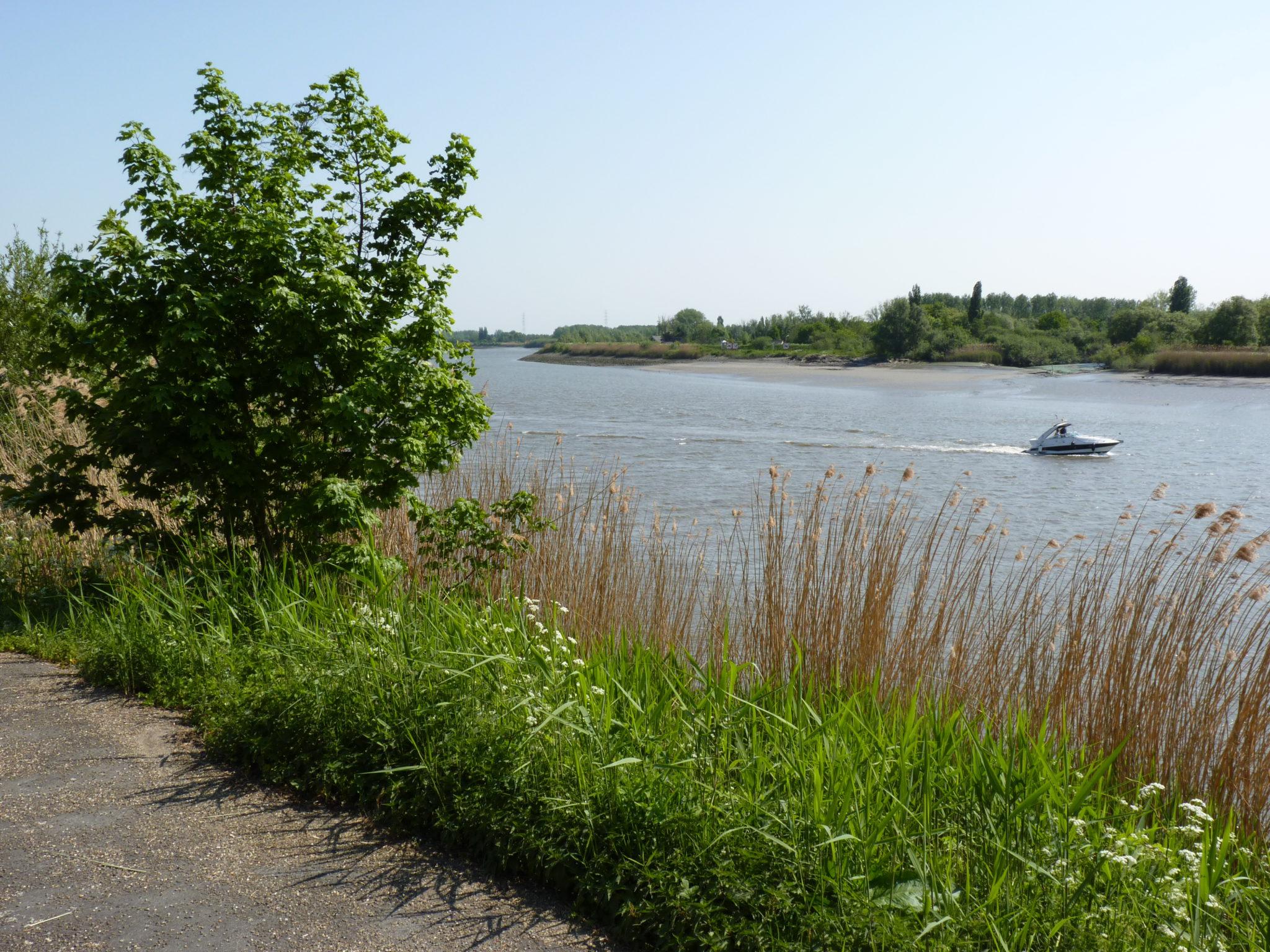 Ontdek de natuurpracht in de Oost-Vlaamse Scheldevallei.