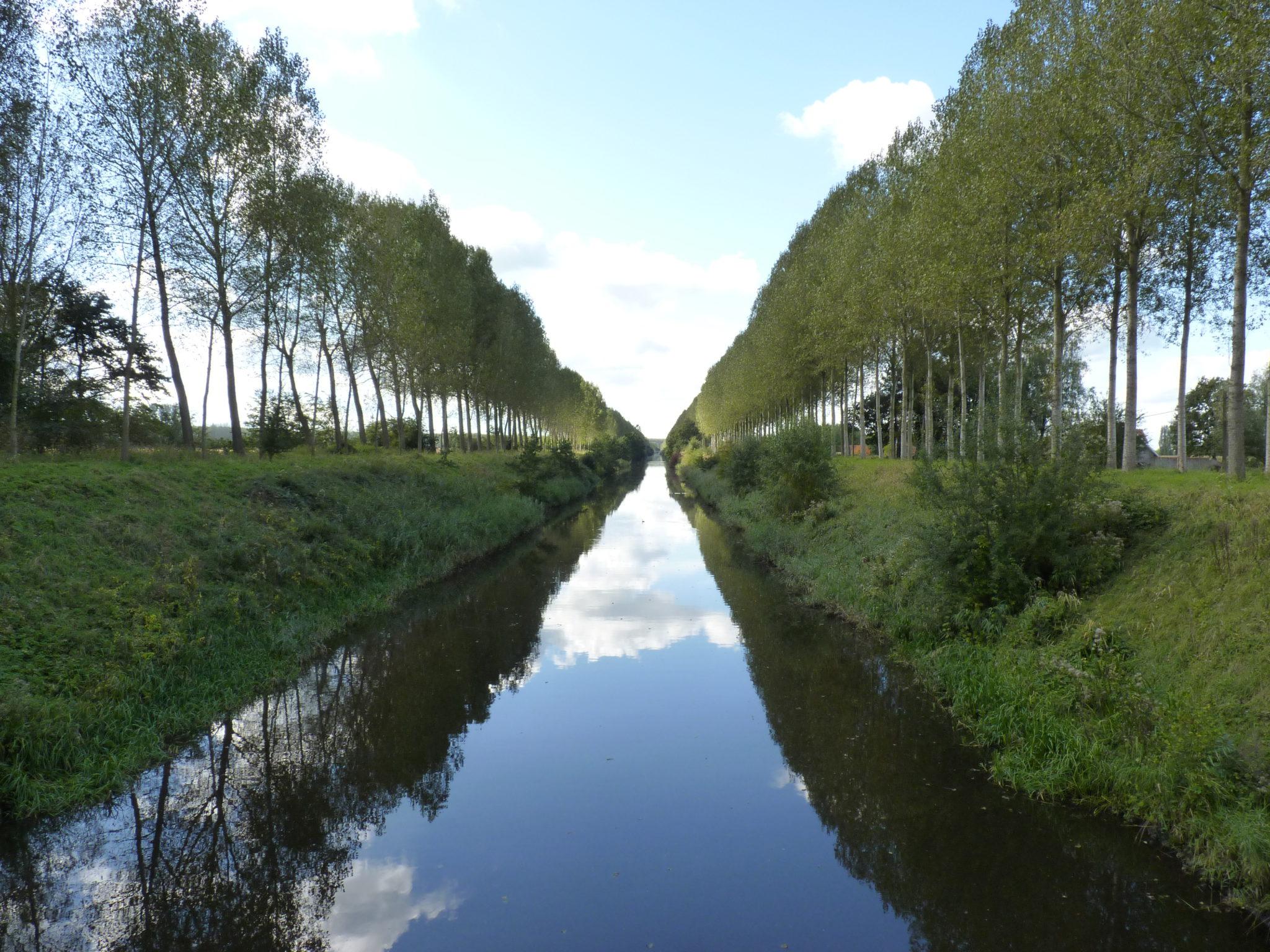 Het polderlandschap, de kreken en Reynaert de Vos.