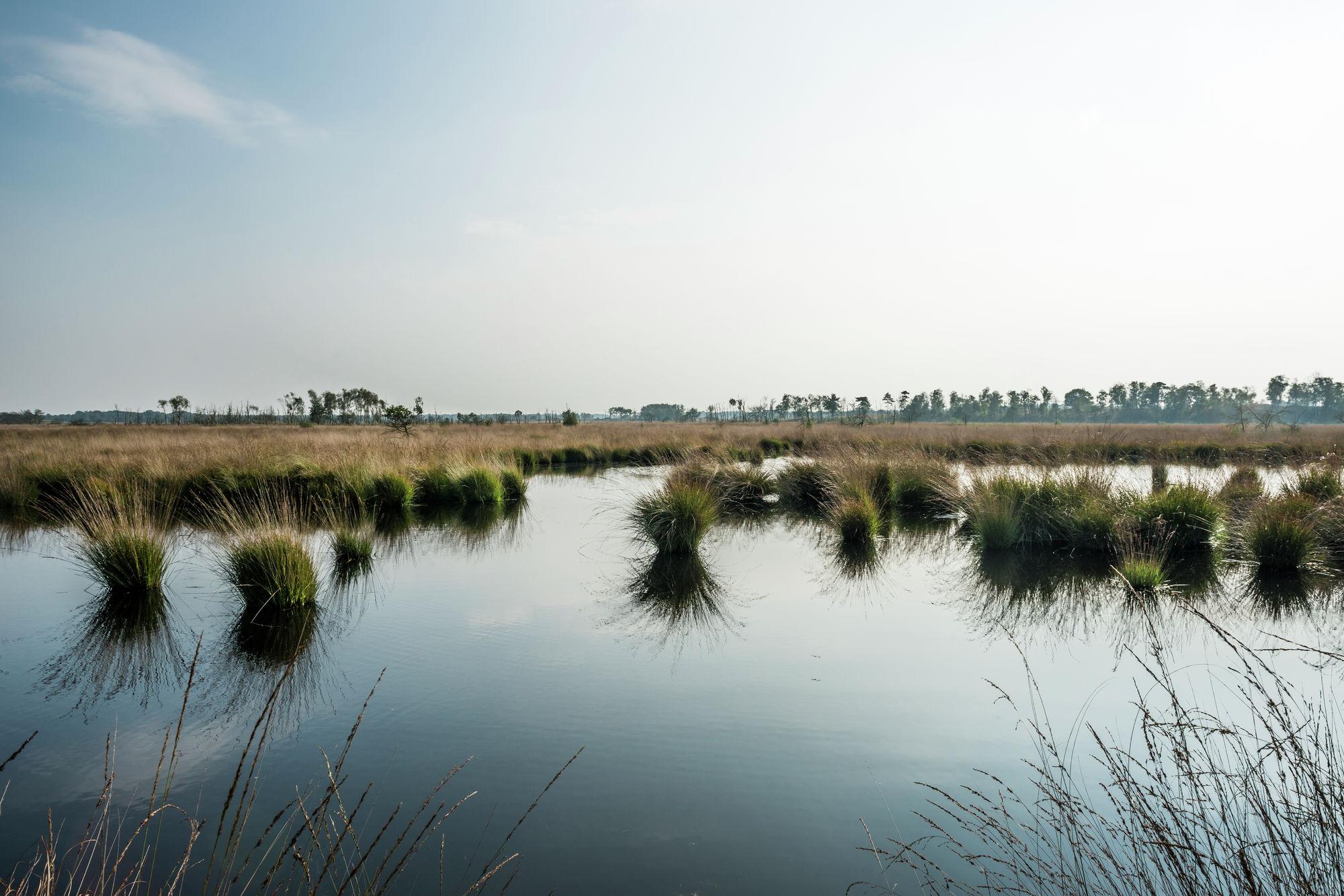 Schepswandeling in de Kempense Meren.