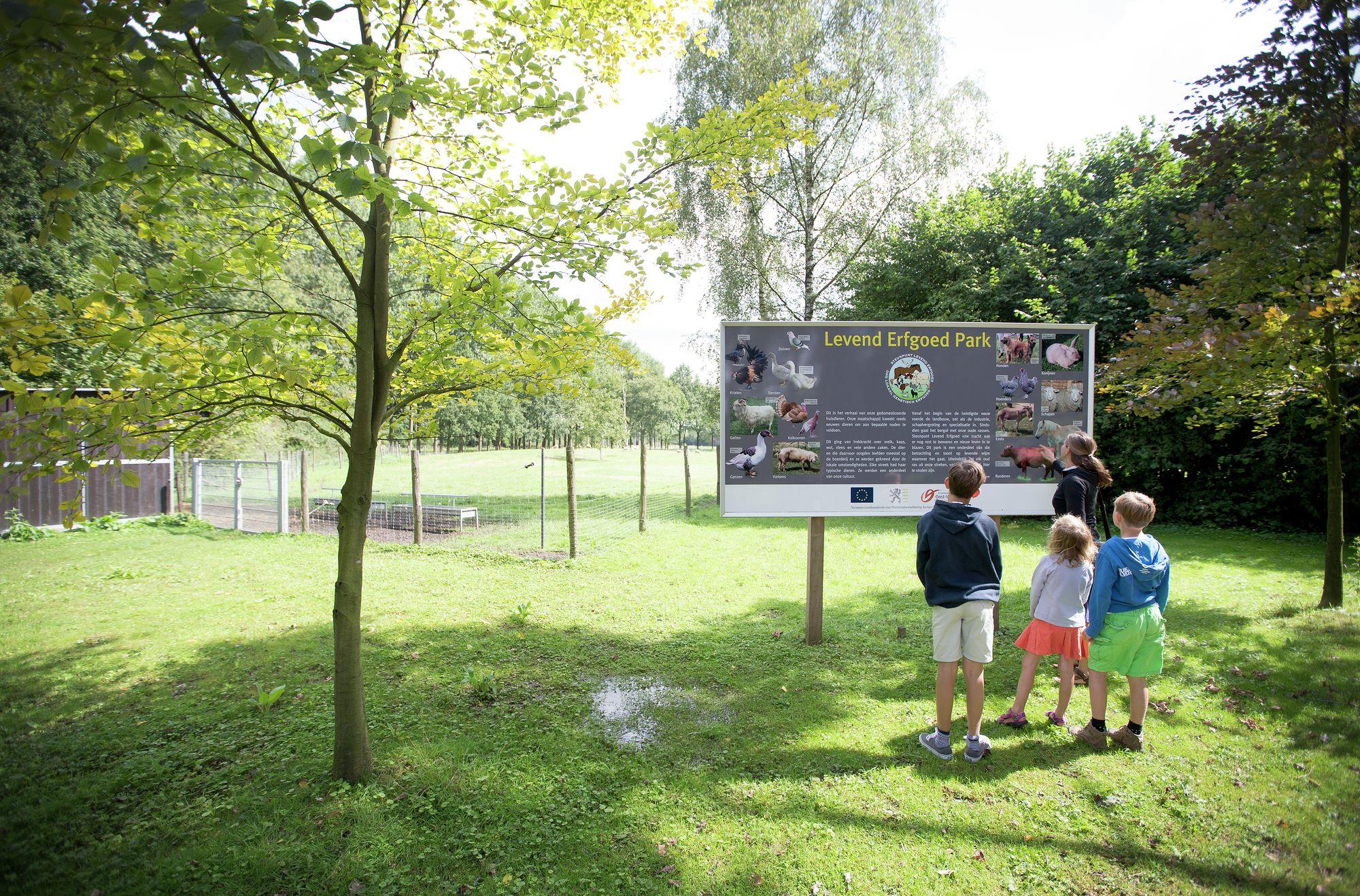 Vlinders spotten in het provinciaal domein Puyenbroeck in Wachtebeke.