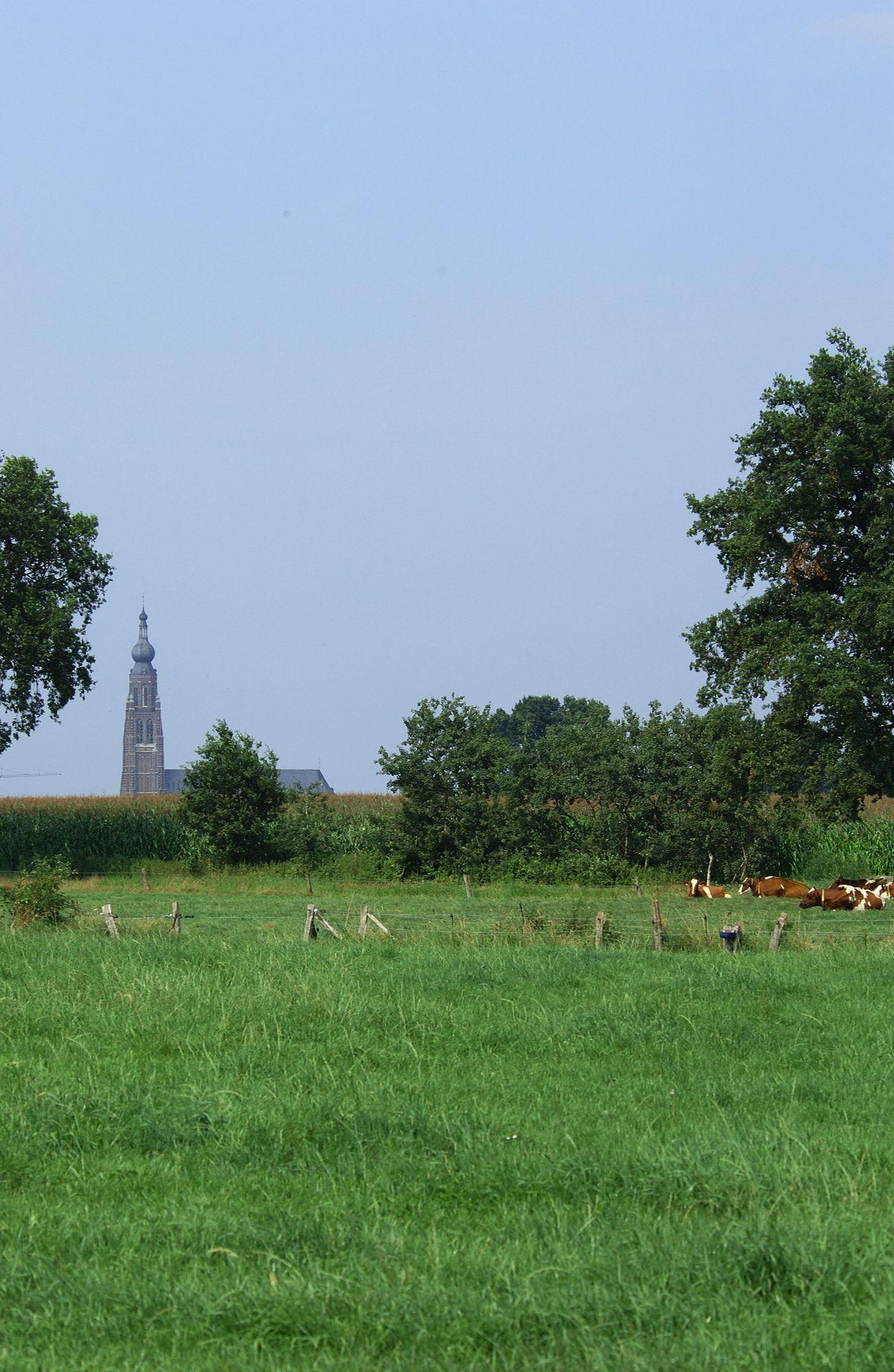 Deken Lauweryspad: Een rolstoelvriendelijke monumentenwandeling in Hoogstraten.