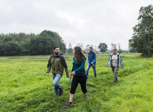 Kempentocht = puur wandelplezier. Nieuwe uitdagende wandelvakantie doorkruist Kempense topnatuur.
