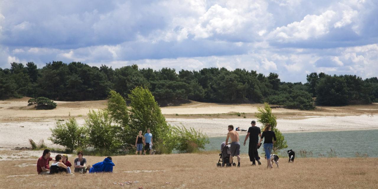Bosland, het grootste avonturenbos van Vlaanderen.