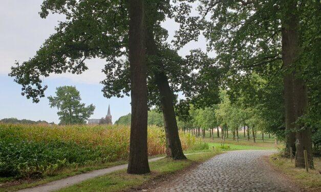 Groene Halte wandelingen.